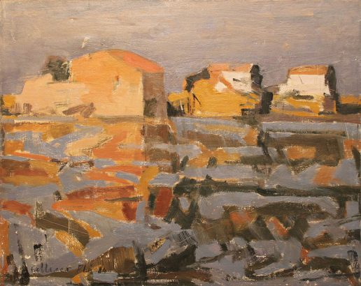 Jose-Pellicer-Pla-Marjal-Sueca-Adsubian-Gallery
