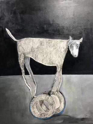 sabine-jesse-kniesel-perro-curioso-adsubian-gallery