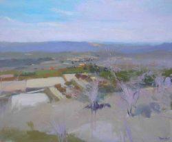 Vicent-Pelegero-Agusti-Natura-L2-11-Adsubian-Gallery