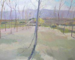Vicent-Pelegero-Agusti-Natura-L2-15-Adsubian-Gallery