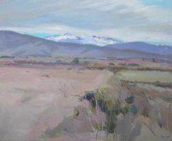Vicent-Pelegero-Agusti-Natura-L2-9-Adsubian-Gallery